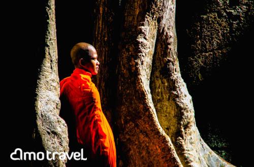 Cambodia_ (6)