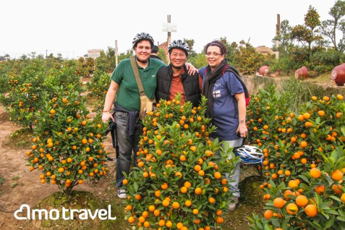 Il tour in bicicletta nel giardino di kumquat